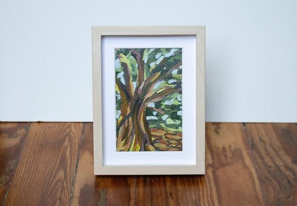 Sunlit Oak Tiny Landscape