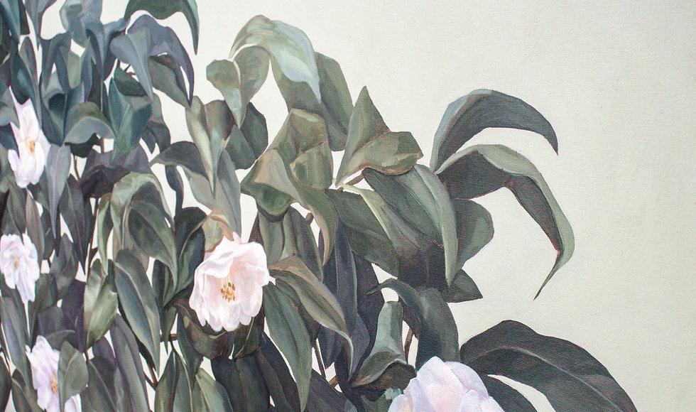 camellias-18.jpg