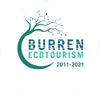 Burren Eco Tourism 10 Years_edited.png