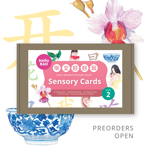 华文好好玩 Mandarin Sensory Cards Level 2