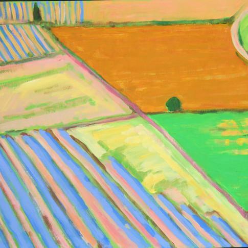 Field beneath the Alpilles