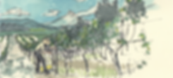 hiyu banner2.PNG