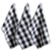 Cotton Buffalo Check Plaid Dish Towels, Set of 3