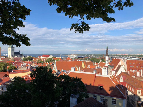 Visiting FibroTx in Tallinn