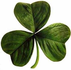 Irish_clover.jpg