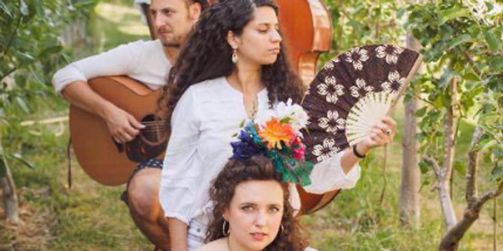 Concert Luna Silva & the wonders