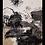 Thumbnail: Rajasthan (2.49 X 3.05)