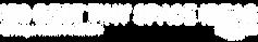 150-btsi-logo-white.png