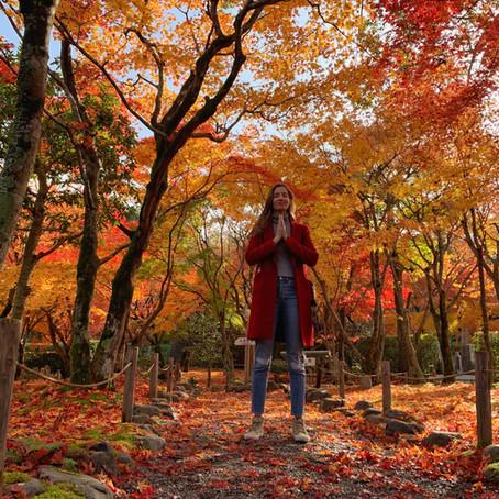 Japão (3) Outono em Kyoto - Roteiro de 4 dias