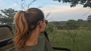 3 days Safari in Kruger