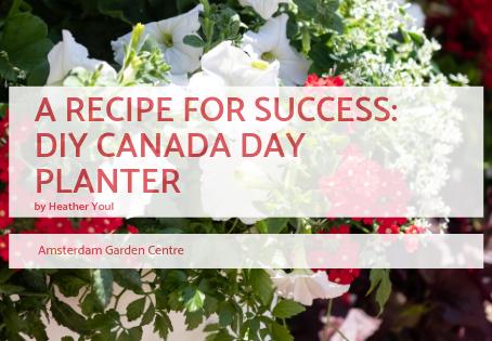 A Recipe For Success - Canada Day Planter