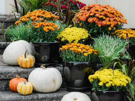 A Recipe for Success: Decorating Your Porch for Fall