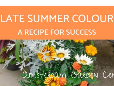 A Recipe for Success - Late Summer Colour Planter