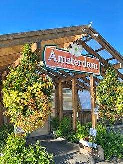 Amsterdam Entrance.JPG