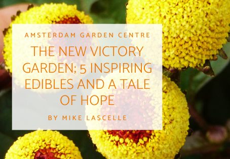 The New Victory Garden; 5 Inspiring Edibles and a Tale of Hope