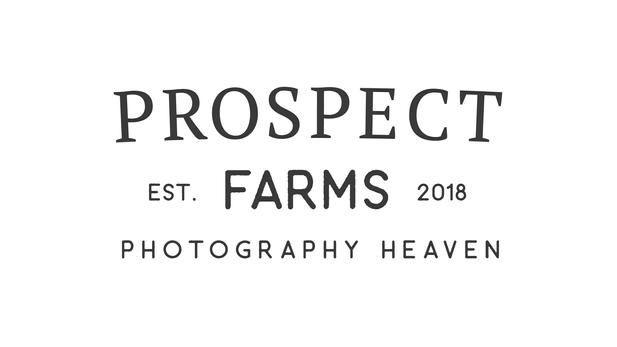 Prospect Farms