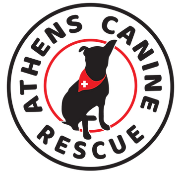 ACR Logo Transparent.png