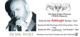 music festivals DJ Mr wolf