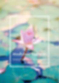 Boek Cover.JPG