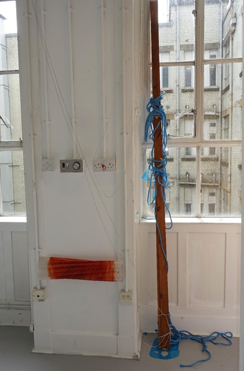 Fishing pole and net