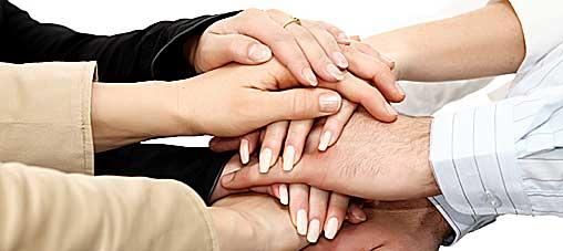 frivillig-organisasjon