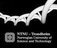 NTNU_mork_edited.jpg