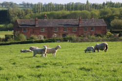 Sulgrave Farm from the fields