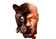 PANTHER%20NOX_edited.png