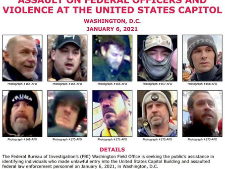 Help Identify & Catch Domestic Terrorists