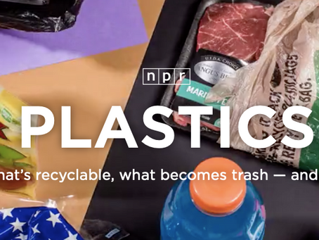 What's recyclable, what becomes trash — and why