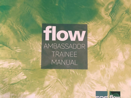 What can a Flow Ambassador bring to your Digital Transformation?