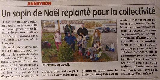article  sapin janv 19_edited.jpg