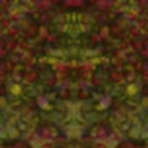 Stonns of GabaaIMG_8929-2.jpeg