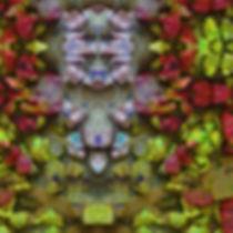 Stonns of GabaaIMG_8929-4.jpeg