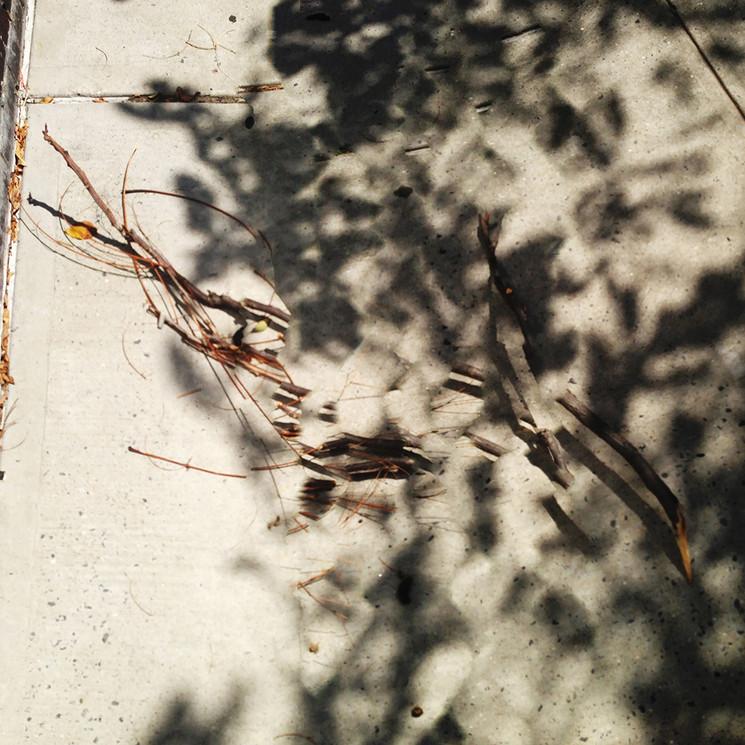 photos-Gruund-IMG_4008.jpg