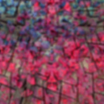 Stonns of Reiness-IMG_8818 copie-1.jpeg