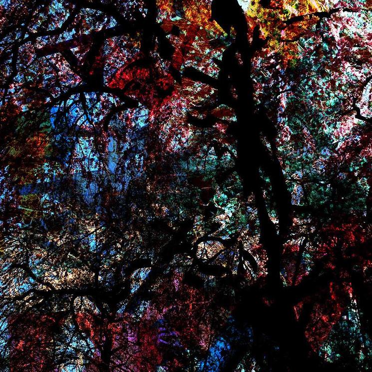 Digital art based on iPhone photos by Halaburda