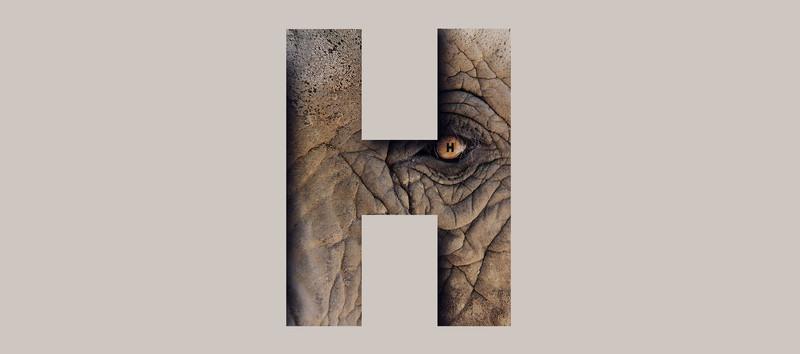 H-for-Huge-by-Halaburda-8 copie.jpg