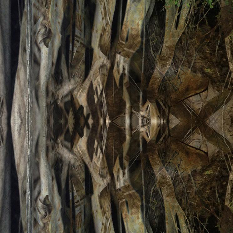 Digital-Treees-IMG_2847.jpgaDigital art based on iPhone photos by Halaburda