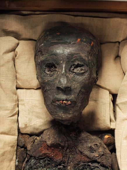 king-tut-mummy-death-mystery_73217_600x450.jpg