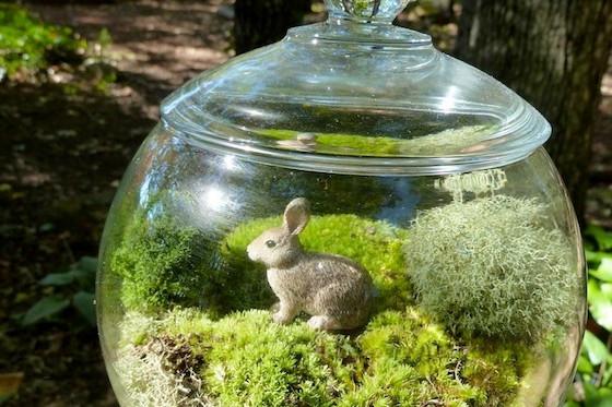 Etsy-Moss-Terrariums.jpeg