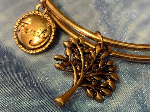 Adjustable Coloured Bracelet- Gold