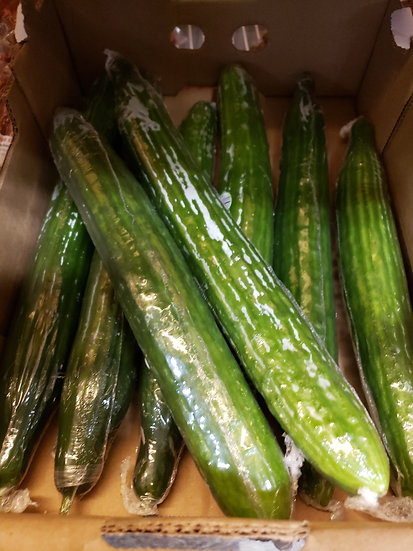 English Cucumbers-Product of Ontario