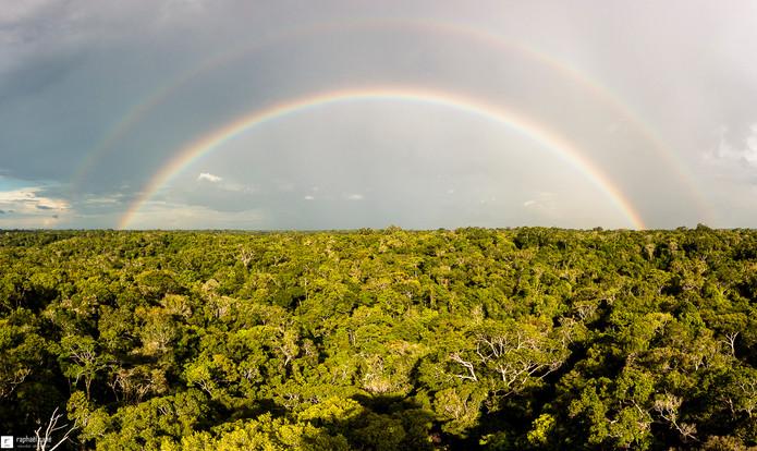 Double arc-en-ciel sur la jungle