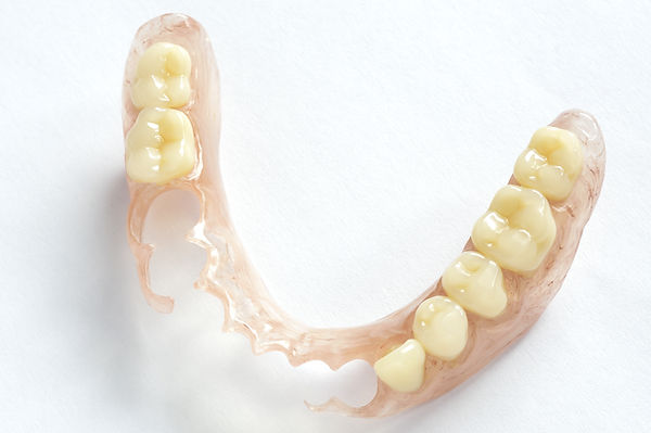 Removable dentures flexible, devoid of n