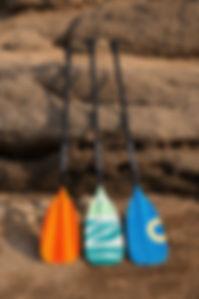 桨1.jpg