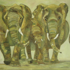 Elephants 14