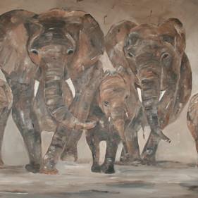 Elephants 15