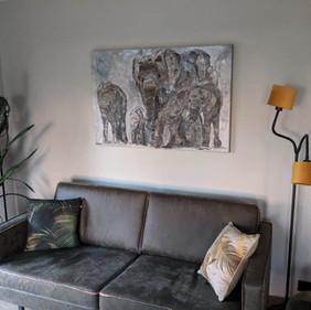 Elephants 16
