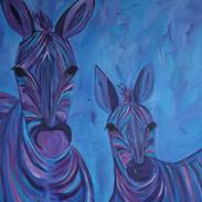 Zebra's blue 1